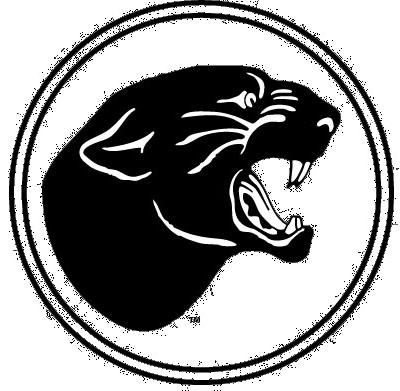 Image result for spash logo